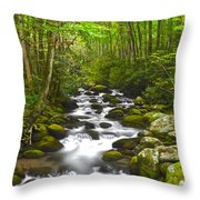 Smoky Mountain Stream Throw Pillow by Frozen in Time Fine Art Photography