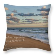 Solitude Throw Pillow by Bill Wakeley