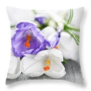 Spring Crocus Flowers Throw Pillow by Elena Elisseeva