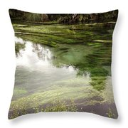 Spring Water Throw Pillow by Les Cunliffe