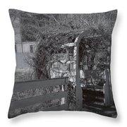 Strawbery Banke Throw Pillow by Joann Vitali