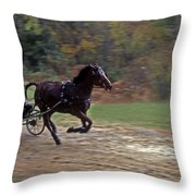 THE RACE IS ON Throw Pillow by Skip Willits