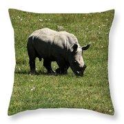 White Rhinoceros Calf Throw Pillow by Aidan Moran
