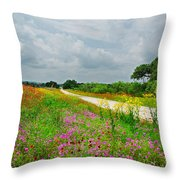 Wildflower Wonderland Throw Pillow by Lynn Bauer