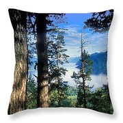 Altay Lakes Teletskoe Throw Pillow by Anonymous