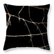 Barbed wire Throw Pillow by BERNARD JAUBERT