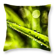 Dew On Grass Throw Pillow by Thomas R Fletcher