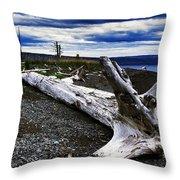 Driftwood On Beach Throw Pillow by Thomas R Fletcher