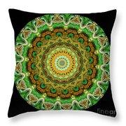 Kaleidoscope Ernst Haeckl Sea Life Series Throw Pillow by Amy Cicconi