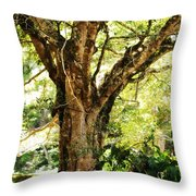 Kingdom Of The Trees. Peradeniya Botanical Garden. Sri Lanka Throw Pillow by Jenny Rainbow