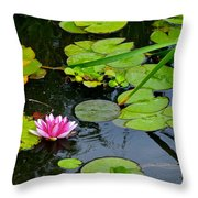 Lilly Pads Throw Pillow by Frozen in Time Fine Art Photography