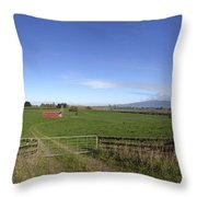 Old Barn Throw Pillow by Les Cunliffe