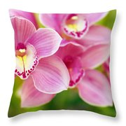 Orchids Throw Pillow by Carlos Caetano