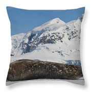 Weddell Seal Throw Pillow by John Shaw
