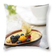 Creme Brulee Dessert Throw Pillow by Elena Elisseeva