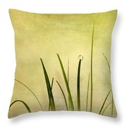 Grass Throw Pillow by Svetlana Sewell