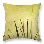 Grass Throw Pillow by Svetlana Sewell