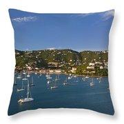 Saint Thomas Throw Pillow by Brian Jannsen