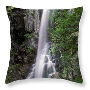 Ussuri Territory Throw Pillow by Anonymous
