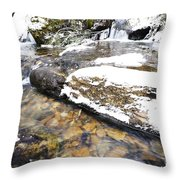 White Oak Run In Winter Throw Pillow by Thomas R Fletcher