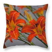 Day Lilly Throw Pillow by William Norton
