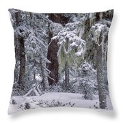 Sikhote Alin Throw Pillow by Anonymous