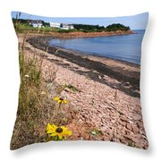 Prince Edward Island Coastline Throw Pillow by Elena Elisseeva