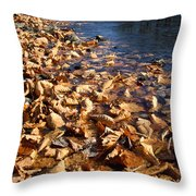 Ussurian Taiga Autumn Throw Pillow by Anonymous