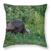 Eastern Wild Turkey Throw Pillow by Linda Freshwaters Arndt