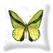 8 Goliath Birdwing Butterfly Throw Pillow by Amy Kirkpatrick