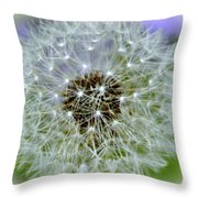 8233 Throw Pillow by Marty Koch