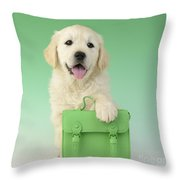 9 - 5 Retriever Dp914sq Throw Pillow by Greg Cuddiford