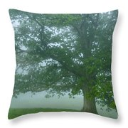White Oak Tree In Fog Throw Pillow by Thomas R Fletcher