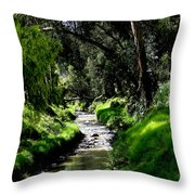 A Babbling Brook Throw Pillow by Al Bourassa