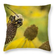 A Bee's Paradise Throw Pillow by Jeff Swanson