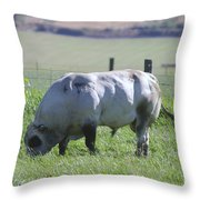 A Big Big Bull  Throw Pillow by Jeff Swan