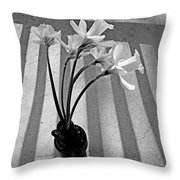 A Brief Moment Throw Pillow by Chris Berry