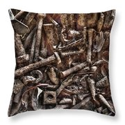 A Case Of Curiosities Throw Pillow by William Fields