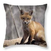 A Cute Kit Fox Portrait 1 Throw Pillow by Thomas Young