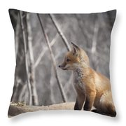 A Cute Kit Fox Portrait 2 Throw Pillow by Thomas Young
