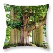 A Day Without You. Park Of The De Haar Castle Throw Pillow by Jenny Rainbow