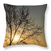 A Filigree Of Branches Framing The Sunrise Throw Pillow by Georgia Mizuleva