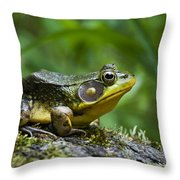 A Frog Is Forever Throw Pillow by Christina Rollo