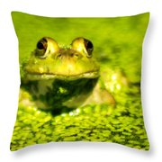 A Frogs Day Throw Pillow by Optical Playground By MP Ray