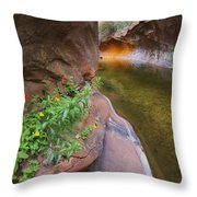A Frogs Rest Throw Pillow by Peter Coskun