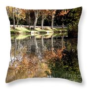 A Golden Moment  Throw Pillow by France  Art