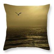 A Newport Oregon Sunset Throw Pillow by Diane Schuster