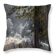 A North Woods Fairy Tale Throw Pillow by Mary Amerman