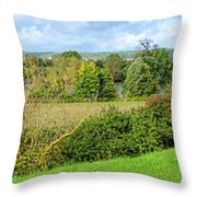 A Painter Landscape Throw Pillow by Olivier Le Queinec