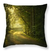 A Path To The Light Throw Pillow by Evelina Kremsdorf